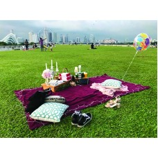 Top 3 things to note before going on a picnic